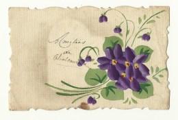 Violettes - Bords Dentelés - Fleurs