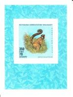 Madagascar MNH Scott #992 Souvenir Sheet 350fr Lemur Fulvus Fulvus - Lemurs - Madagascar (1960-...)