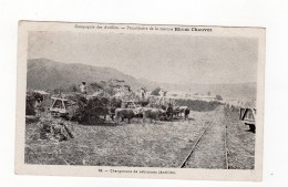 Rhum Chauvet - Chargement De Cabrouets - Martinique - - Sin Clasificación