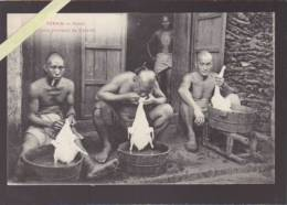 Asie - Indo Chine - Tonkin - Hanoi - Chinois Plumeurs De Canards - Rare Métier - Cartes Postales