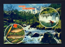 ANDORRA  -  Angling And Multi View  Used Postcard As Scans - Andorra