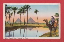 Le Caire Et Les Pyramides De Giseh - Le Caire