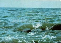 The Sea Near Ainazhi - Vidzeme Seaside Views - Latvia USSR - Unused - Lettonie