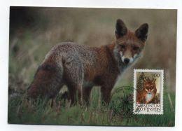 Liechtenstein FOX FUCHS ANIMALS MAXI CARD 1993 - Stamps