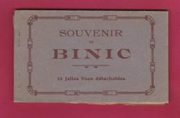 22 - BINIC - SOUVENIR DE BINIC - 12 Vues Détachables - Binic