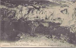 Massif De La Chartreuse - Intérieur Des Grottes Des Echelles - Dentelures De Stalactites - France
