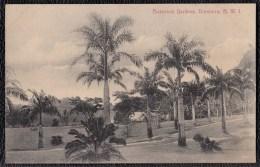 SUPERB OLD CARD * BOTANICAL GARDENS * DOMINICA - Rare !!!! - Dominique