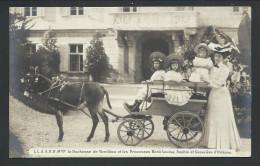 CPA - Monarchie - Dynastie - Famille Royale - Noblesse - Duchesse De VENDOME - Princesses D'Orleans - Attelage Ane   // - Königshäuser