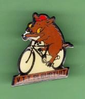 CYCLISME *** VTT PLEURTUIT *** 0002 - Ciclismo