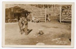 USA--Wyoming--TEPEE LODGE--Big Horn (très Animée,ranch Avec Chevaux Et Cowboys)  14 X 9   éd  ???---Belle Carte - Etats-Unis