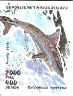Madagascar MNH Scott #1287 Souvenir Sheet 2000fr Galeoshinas Zyopterus - Sharks - Madagascar (1960-...)