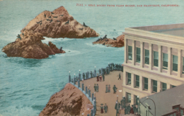 USA SAN FRANCISCO / Seal Rocks From Cliff House / CARTE COULEUR - San Francisco