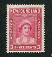 Old Stamp - See Scan - Newfoundland
