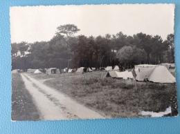 SAINT GEORGES SUR CHER Camping Sous Les Pins - France