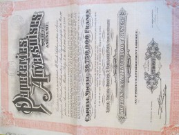 Papeteries Anversoises/Action De Capital/ 100 Francs Au Porteur/ANVERS/Belgique// 1928    ACT107 - Industrie