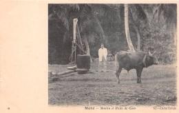 ¤¤  -   6   -  SEYCHELLES   -   MAHE    -  Moulin à Huile De Coco    -  ¤¤ - Seychelles