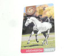 Horse Pferd Hungarian Half-breed Mischling 2001 Phonecard Hungary - Caballos