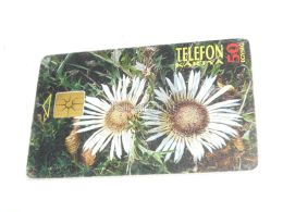 Flower Blume 1995 Phonecard Hungary - Flores
