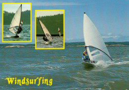 Windsurfing Is Life