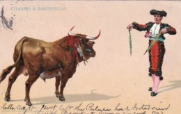 Bull Fight Citando A Banderillas 1907 - Corrida