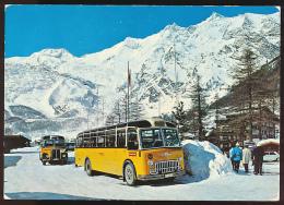 Carte :  Beau Plan D' Autocars, Saas-Fee (Suisse), Alphubel, Täschhorn, Dom, Lenzspitze (circulée, 1978) - Buses & Coaches
