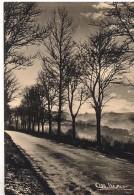 CPM - ALBERT MONIER -  DECEMBRE - Edition Photographies A.Monier / N° A 952 - Monier