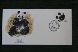 Enveloppe Timbrée - GIANT PANDA - Cartas