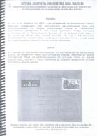 HISTORIA AEROPOSTAL CON NUESTRAS ISLAS MALVINAS - PRIMEROS VUELOS EXPERIMENTALES DE LA DECLARACION CONJUNTA EN SOBRES CI - Correo Aéreo E Historia Postal