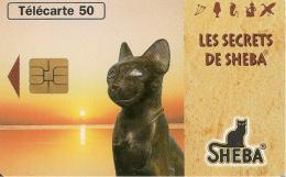 CARTE°-PUCE-PRIVEE-PUBLIC- 50U-EN1587-SO3-08/96-JD-SHEBA-CHAT Et Ses ORIGINES-UTILISE-TBE - 50 Einheiten