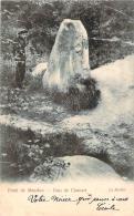 92 - Forêt De Meudon, Bois De Clamart - Le Menhir - Dolmen & Menhirs