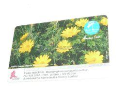 Adonis Transsylvanica Flower Blumen 1999 Phonecard Hungary - Bloemen