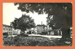 A591 / 033  43 - MONLET Place Et Arbre De Sully - France