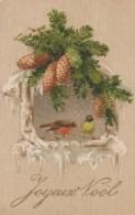 NOEL -  Joyeux Noel - Rouge-Gorge Sous Pin - Noël
