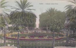 Tunisia Tunis Avenue Jules-Ferry 1911