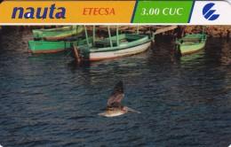 TARJETA DE CUBA DE NAUTA DE 3 CUC DE UN PELICANO (BIRD-PAJARO) - Cuba