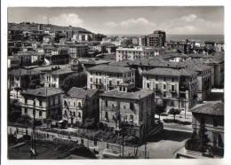 Ancona - F.G. - Anni '1950 - Ancona