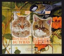 TCHAD 2011 - Chats, Félins - BF Neuf // Mnh - Tchad (1960-...)