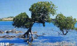 Telecarte De Nouvelle Caledonie NC 118 - Nouvelle-Calédonie