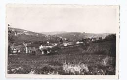 CPSM 71 - CHASSELAS - Grands Vins Renommés - Mairie , Ecole Et Hameau De Voisin - Très Jolie Vue Avec Détails - Otros Municipios