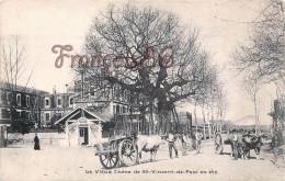 (40) Saint St Vincent De Paul - Vieux Chêne En été - 2 SCANS - Autres Communes