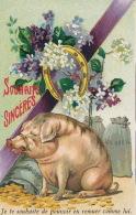 """COCHON - PIG - Jolie Carte Fantaisie Cochon Avec écus Fer à Cheval Fleurs """" Souhaits Sincères """" - Nouvel An"""