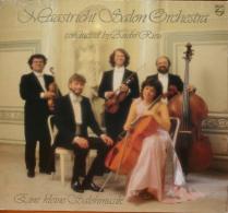 * LP *  Maastricht Salon Orchestra - Eine Kleine Salonmusik (Holland 1987 EX!!!) - Klassiekers