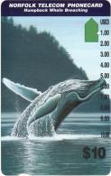 NORFOLK ISL. - Whale Breaching(series No: 3), Tirage %5000, Used - Norfolk Island