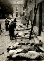 Atrocités Allemandes Découvertes Après La Libération De Paris - Tirage Photo Originale  - 24 (L )X1 8 (H) - Lot 15730 - Guerre, Militaire