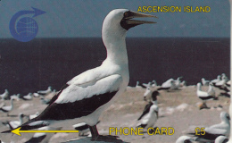 ASCENSION ISL.(GPT) - White Boody Bird, CN : 2CASA, Tirage 5250, Used - Ascension (Insel)
