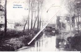 TIRLEMONT - Mout Molen - Superbe Carte Circulée Vers Namur En 1905 - Tienen