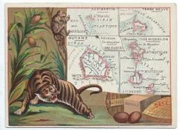 Possessions De France/Image Pédagogique/GUYANE/MIQUELON/St MARTIN/ TERRE NEUVE/Vers 1880-1890   CRD93 - Autres