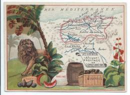 Possessions De France/Image Pédagogique/PROVINCE De CONSTANTINE/Constantine/Vers 1880-1890   CRD98 - Autres