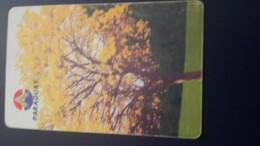 Paraguay-(par-a-18)-lapacho En Flor National Tree-(30units)-used Card+1 Card Prepiad Free - Paraguay
