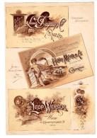 Affiche Planche Chromo Plakat Env. 28x19 Cm 1894 Meyer Conserves Génève Suisse, Werner Lithograf Lithograf Wien Autriche - Chromos